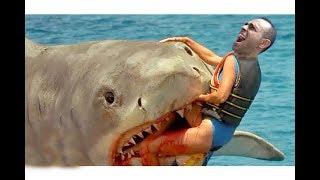 وحيد فى المحيط : اصطياد اكبرسمكة قرش في لعبة raft #3 !!