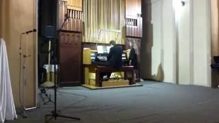 Лабутены на органе (Красноярск)