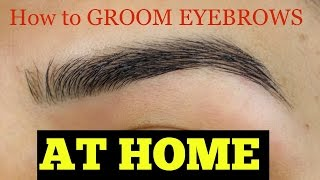 How to Groom Eyebrows AT HOME