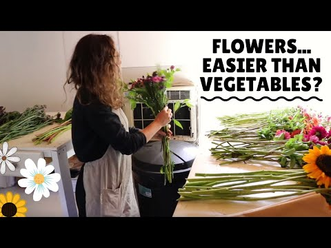 Flower Farming - How To Process Flowers And Make Market Bouquets | Full-Length