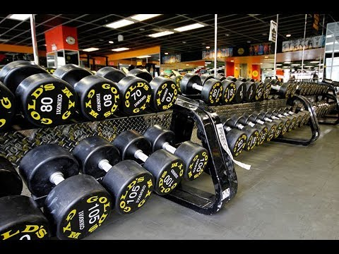 23aac24bb Golds Gym Port Coquitlam B.C - YouTube