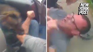Police dog tears into man's arm so brutally he needs surgery | New York Post
