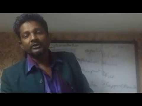 SAP Project Management Overview by Imam Hussain Makki