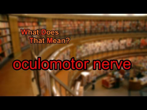 What does oculomotor nerve mean?