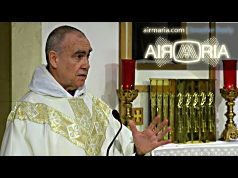"""Step Back, and Turn Off the Internet!"" - Jun 18 - Homily - Fr Andre"