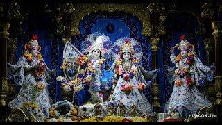 Sandhya Arati Darshan Sri Sri Radha Rasbihari Temple 16th Jan 2019 Live from ISKCON Juhu, Mumbai