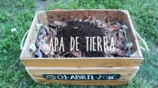 ¿CÓMO HACER COMPOSTA CASERA? / CLICK thumbnail