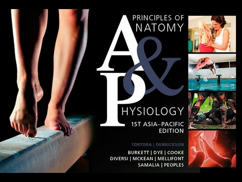 principles of anatomy and physiology 1st asia-pacific edition pdf free