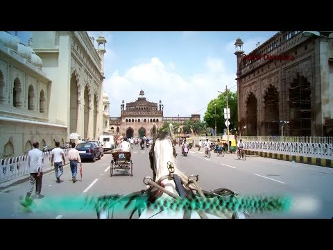 Lucknow Ki Machhliyan (Influence of Fish in Culture and History  of Awadh)