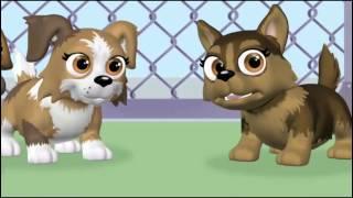 Pet Parade - Επεισόδιο 8 - Σπίτι μου σπιτάκι μου