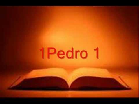 BIBLIA HABLADA 1PEDRO