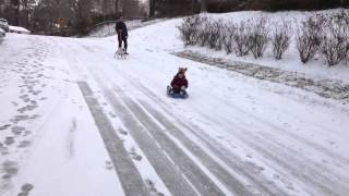 Raleigh snow day