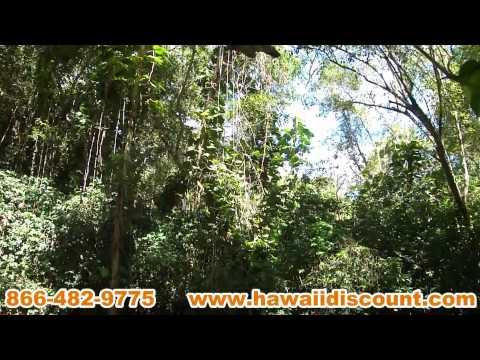 Kipu Zipline Safari Outfitters Kauai Hawaii Discount