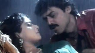 Kshana Kshanam Movie Video Songs || Ammayi Muddu Video Song || Venkatesh , Sridevi