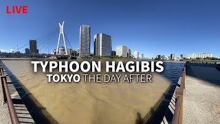 Typhoon Hagibis Day After in Tokyo