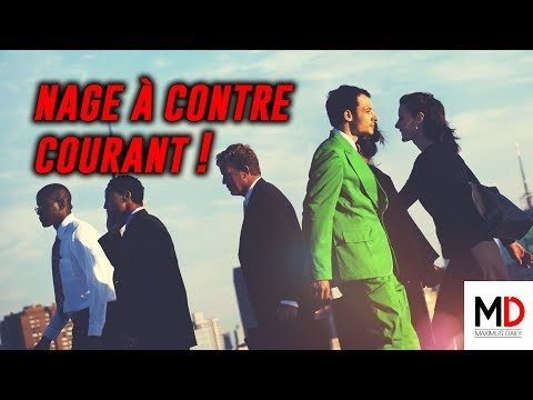 Nage à contre-courant │Maximus Daily