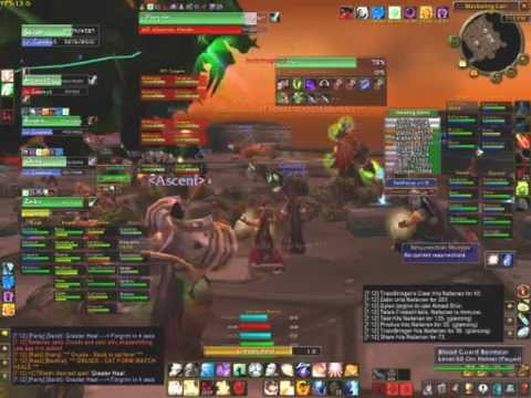 Vanilla WoW 40man Raid Ascent vs Nefarian
