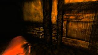 Amnesia: The Dark Descent Parte 2 (Guia) en Español by Xoda
