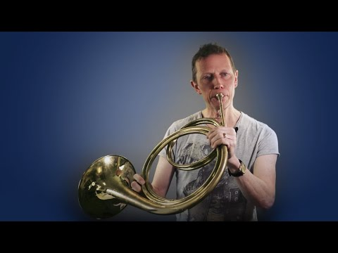 Introducing Mozart's Horn