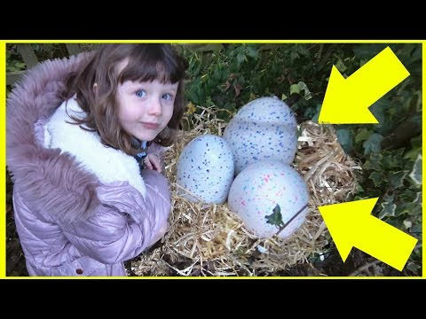 What has Laid MYSTERY EGGS in OUR GARDEN?! Surprise Hatching!!