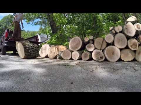 Frugal Friday-Find Free Firewood