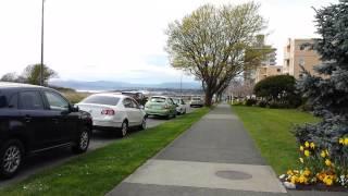 Cherry Blossom Time in Victoria, BC