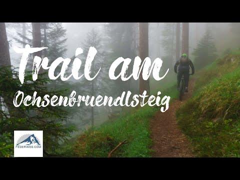 MTB Trail am Ochsenbründlsteig