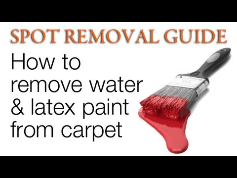 How Do You Get Dry Latex Paint Out Of Carpet Carpet