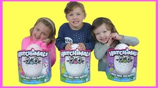NEW HATCHIMALS Giant Egg Surprise | Hatchimals SURPRISE EGGS REALLY HATCH | The Disney Toy Collector