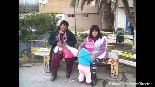 Hechos voluntarios de Rene Mey en Chile 2014