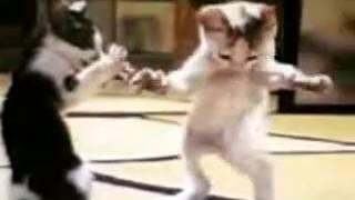 بسي عم ترقص