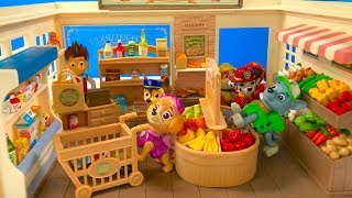 Learn Names of Fruits Vegetables Food with Paw Patrol Supermarket   FIzzy Fun Toys