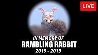 🔴 In Memory Of Rambling Rabbit LIVE