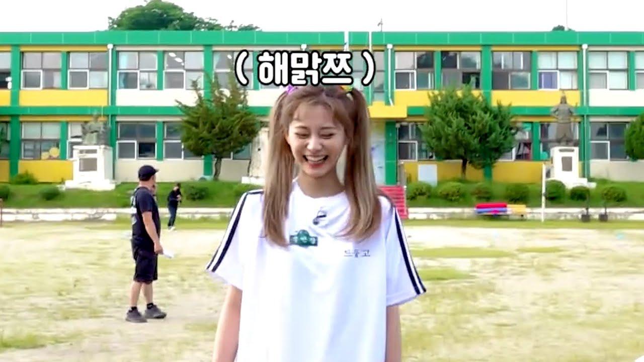 [TWICE] 공놀이가 즐거운 쯔뭉이 세상 해맑쯔~ #shorts