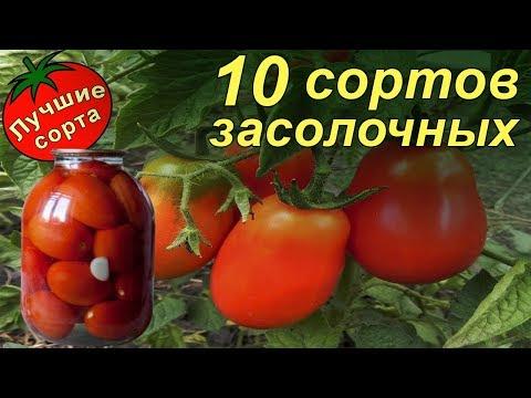 Лучшие урожайные засолочные сорта томатов 2017-2018 (низкие) | засолочные | томатов_2017 | урожайные | томатов | томаты | лучшие | сорта | на_2018