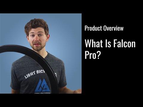 Falcon Pro Overview