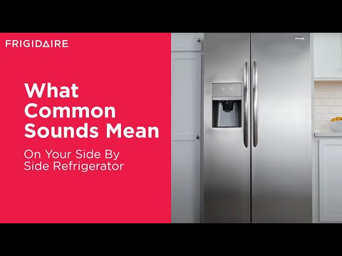 Understanding Common Sounds & Noises of Your Refrigerator