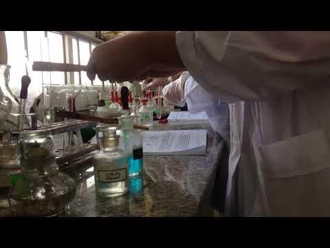 Phản ứng đisaccarit với đồng II hiđrôxit