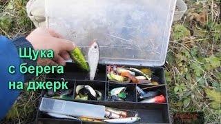 Рыбалка осенью на щуку с берега на спиннинг на воблер.