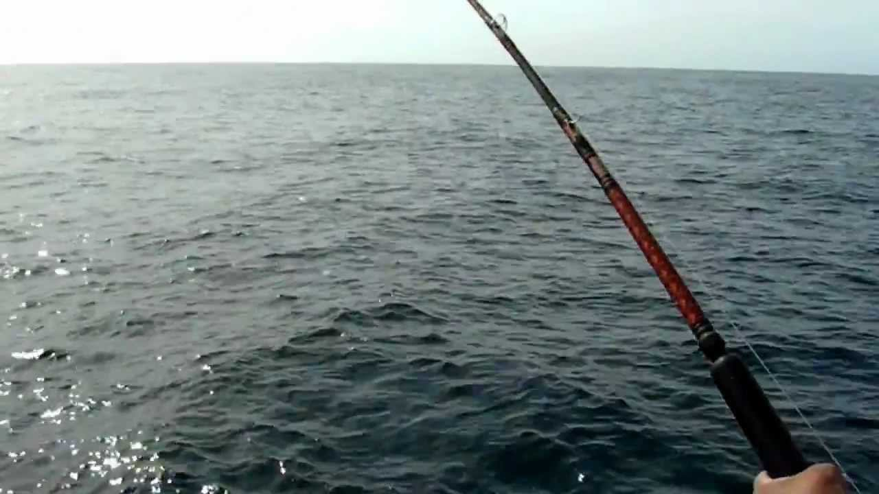 Raul and matt double hook up on a rooster fish cabo san for Rooster fish cabo