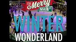 Winter Wonderland Ice Rink Video