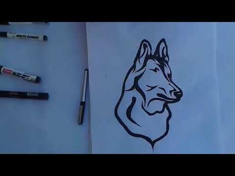 how-to-draw-dog-tattoo....طريقة-رسم-كلب-...draw-dog