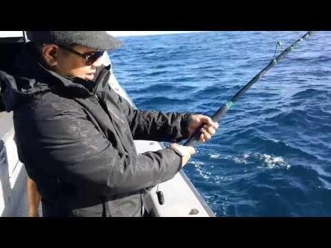 Paihia: Fishing