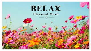 Relax   Classical Music   Chopin Beethoven Satie Mozart Liszt