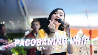 Yeni Inka Pacobaning Urip Live Cover Ratu Ambyar Feat Ggm