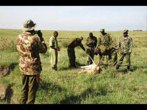 The Poisoning of Kenya