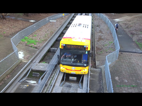 Drunk Bus Thinks its a Train!! The O-bahn Busway in Adelaide, Australia 2017