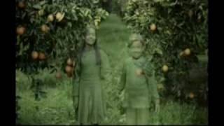 Cappy Yeni Reklam