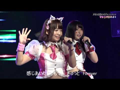 マシュマロ3d+ 「もっとぎゅっとForever」(in 名古屋CLUB SARU)