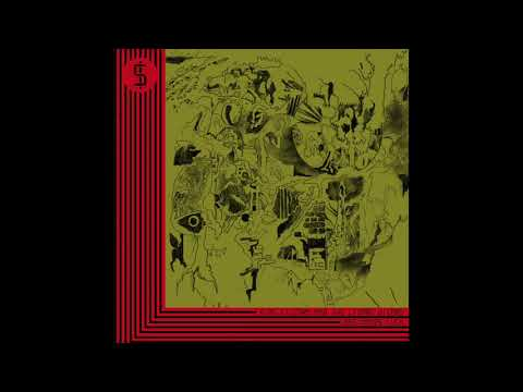 King Gizzard & The Lizard Wizard - Beginner's Luck